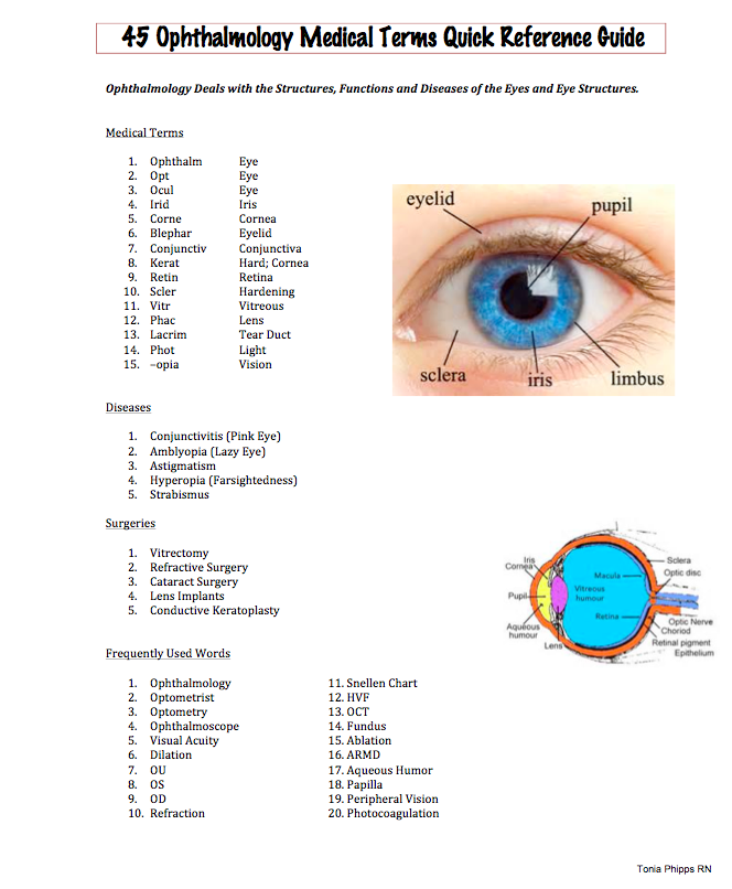 Easy Medical Terminology Oculoplasty Free PDF