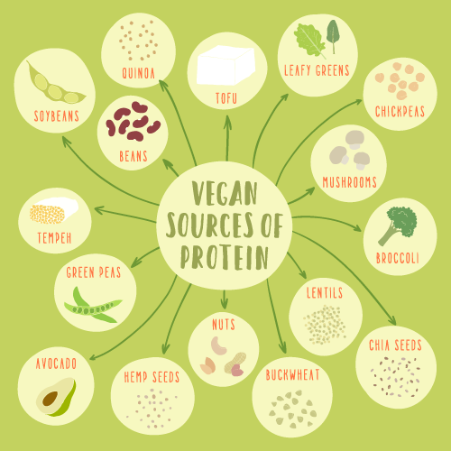 benefits of plant diet