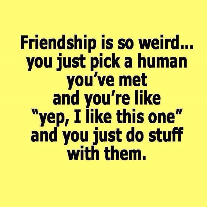 Best Friend Goals Friendship Goals Quotes Friends Quotes Funny Friendship Quotes Funny
