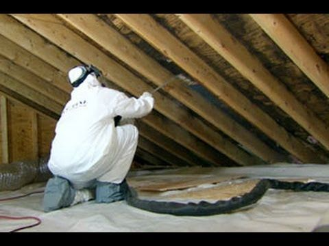 Surviving Mold In Your Attic In 2020 Mold Remover Green Tea Oil Molding