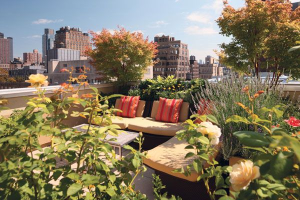 New Book Rooftop Gardens The Terraces Conservatories And Balconies Of New York Reveals Nyc S Coolest Rooftop Gardens Urban Garden Design Urban Gardening Balcony Small Urban Garden