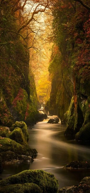 Fairy Glen Gorge in North Wales | by Craig McCormick