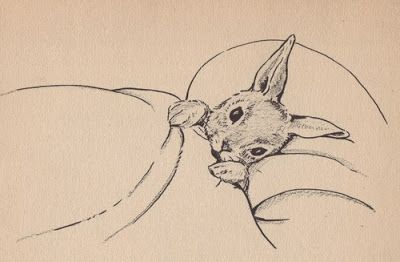 Beatrix Potter -- ART ---