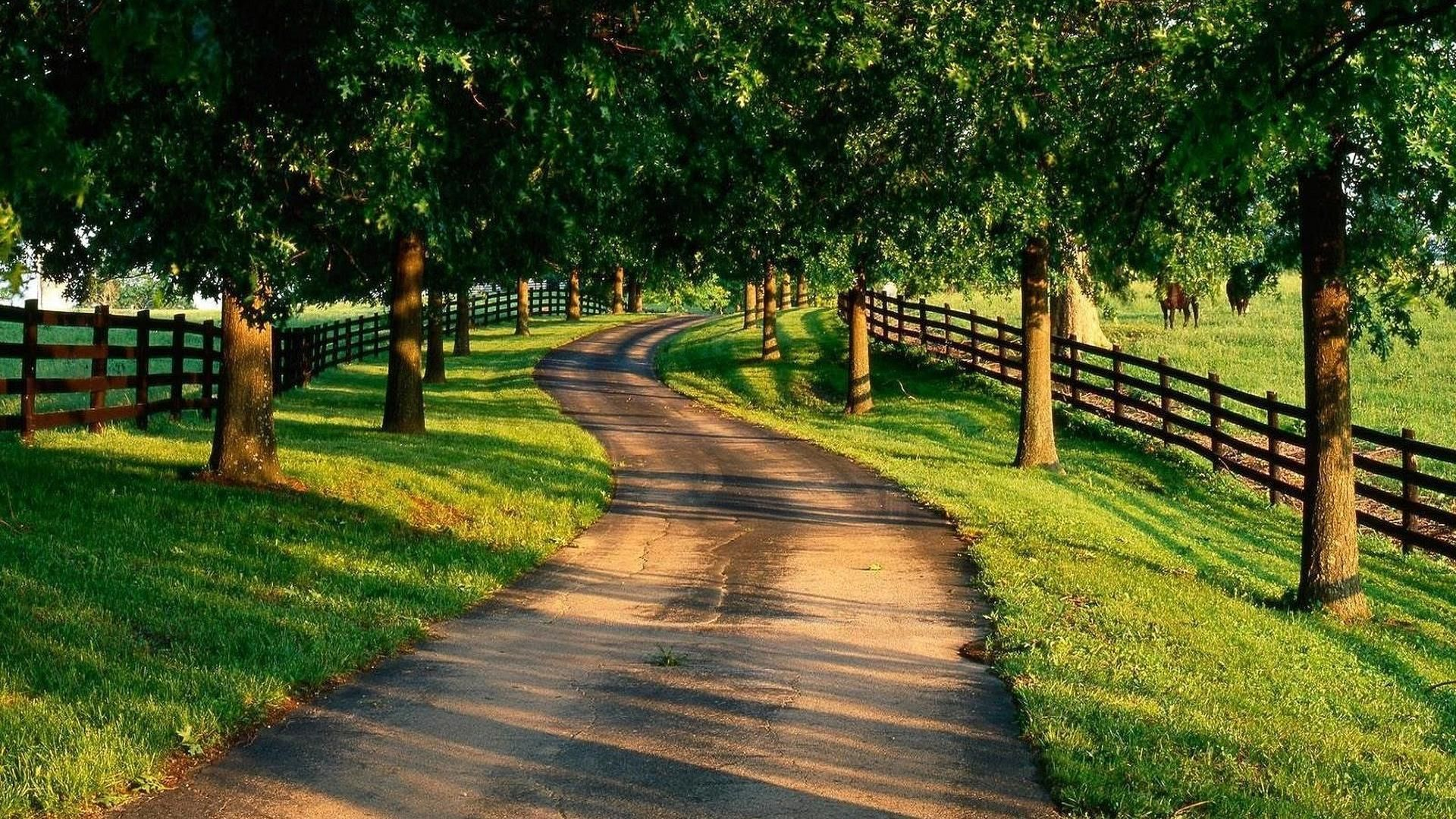 Must see Wallpaper Horse Country - 417f93fb25e8160d28d080a5a621fd9f  You Should Have_939781.jpg