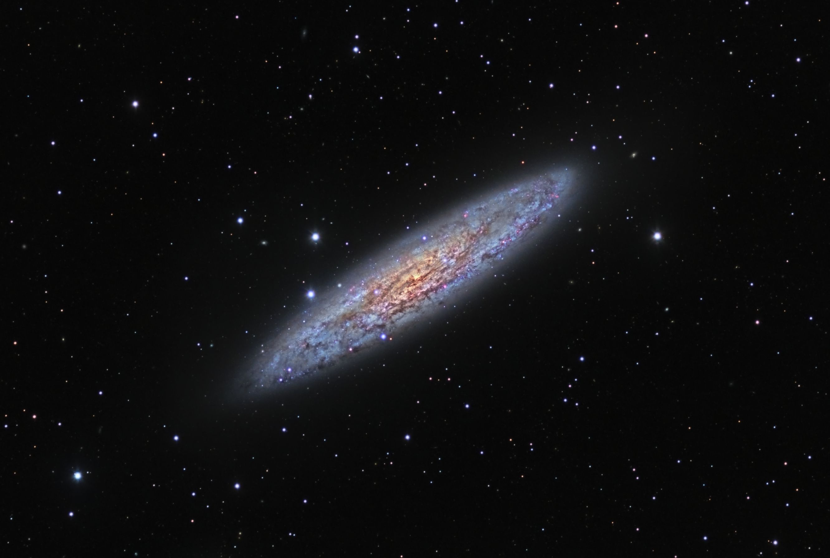 NGC253 - The Silver Dollar Galxy
