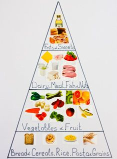 how to build a food pyramid