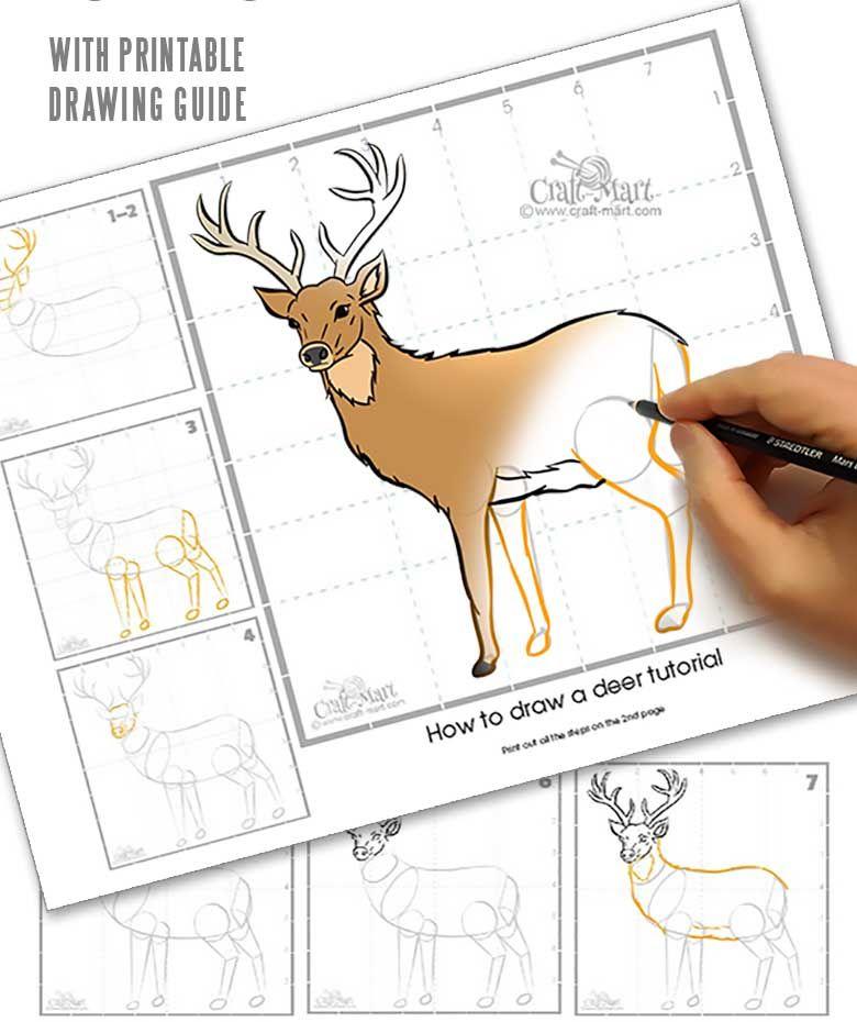 Drawing a deer in 10 steps - easy tutorial - Craft-Mart in ...