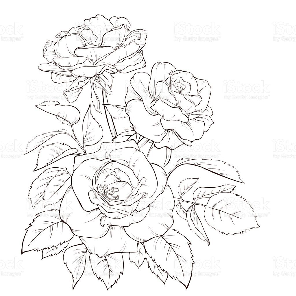 Art product bouquet flower painted image rose flower