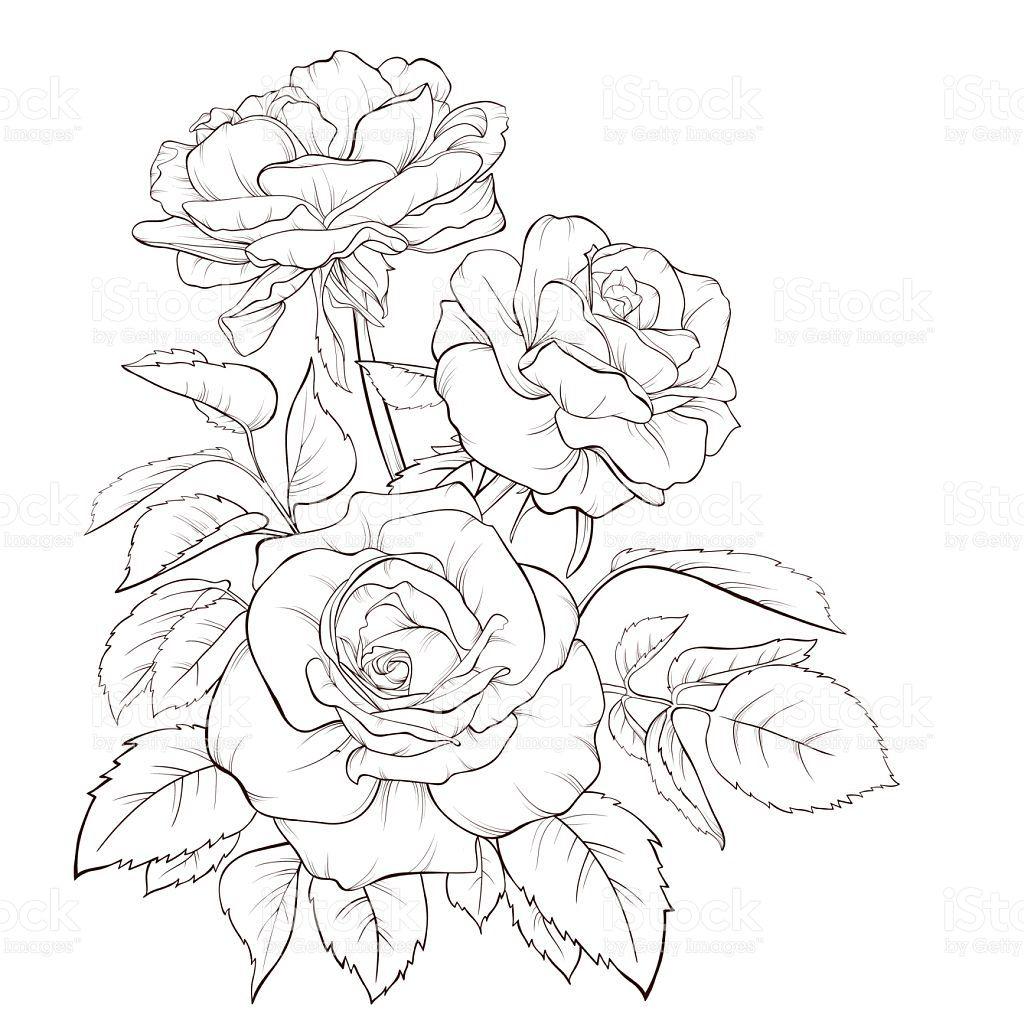 Art Product Bouquet Flower Painted Image Rose Flower
