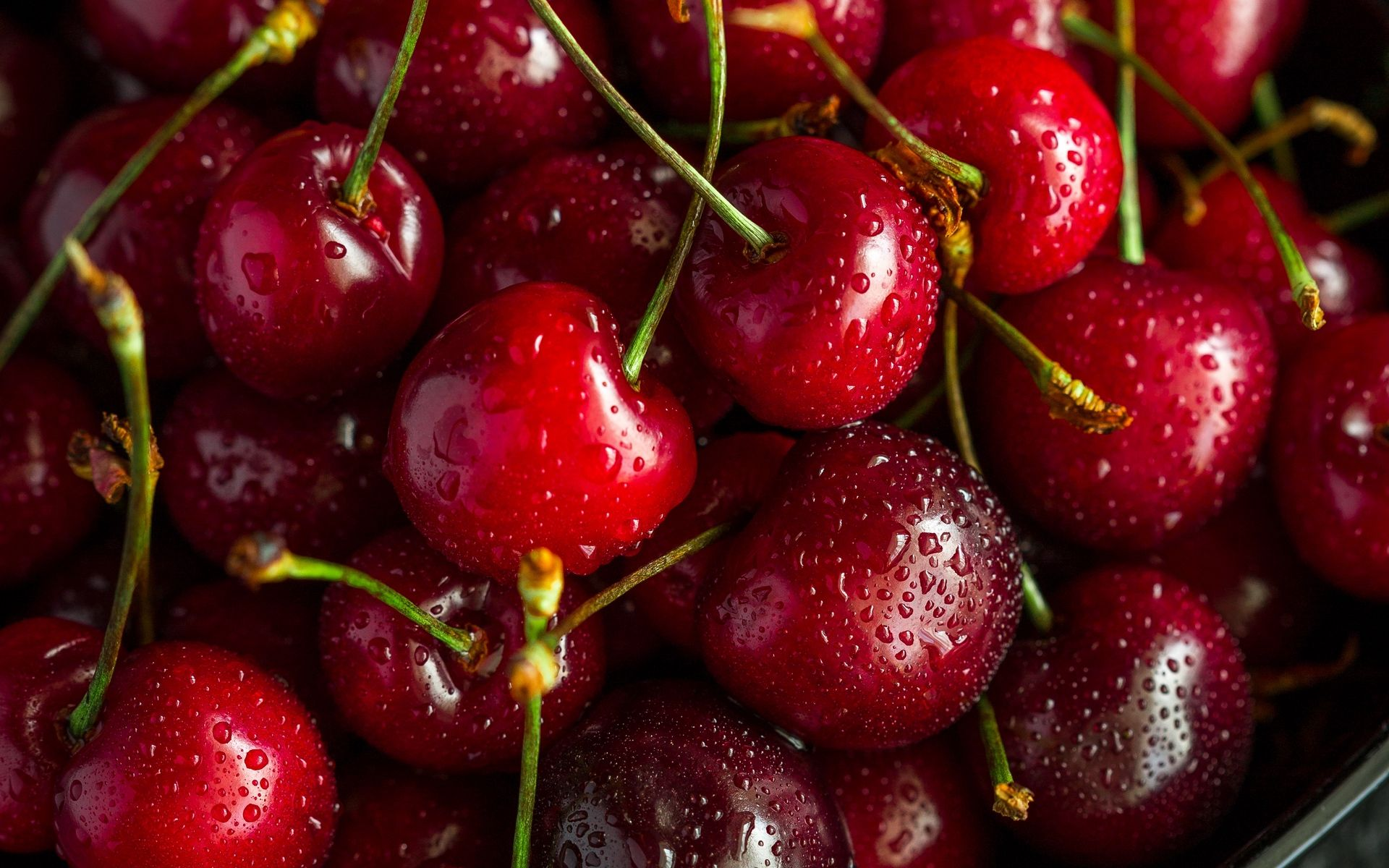Cherries Wallpaper Hd Cherry Wallpaper Berries Hd wallpaper red fruit cherries berries