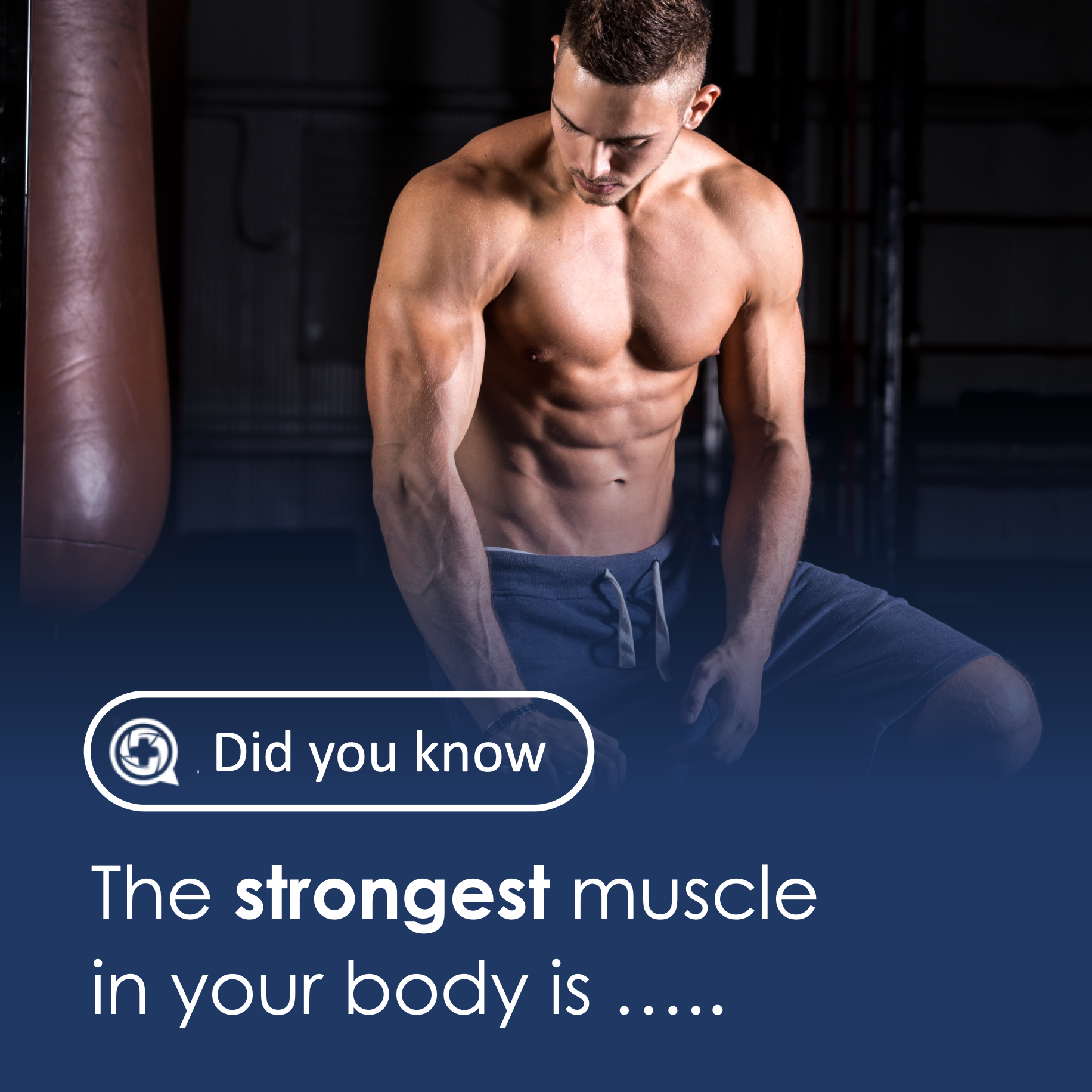 What is strongest muscle in the body