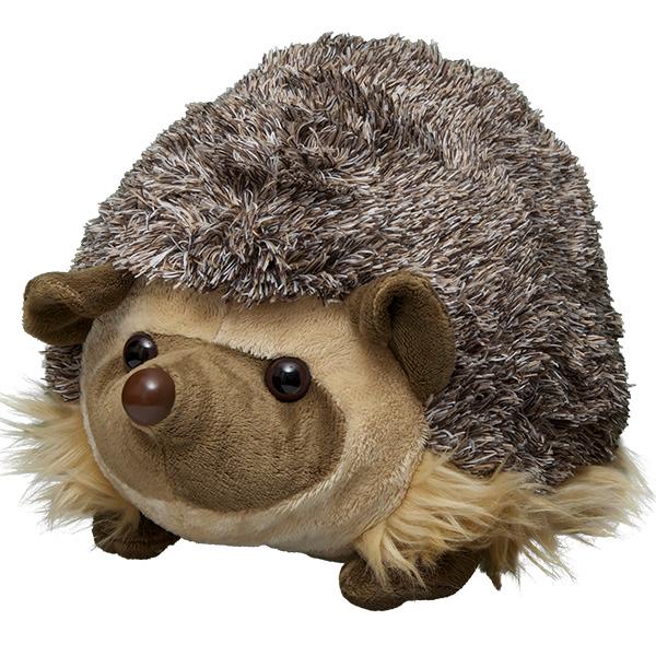 50+ Adopt hedgehog info