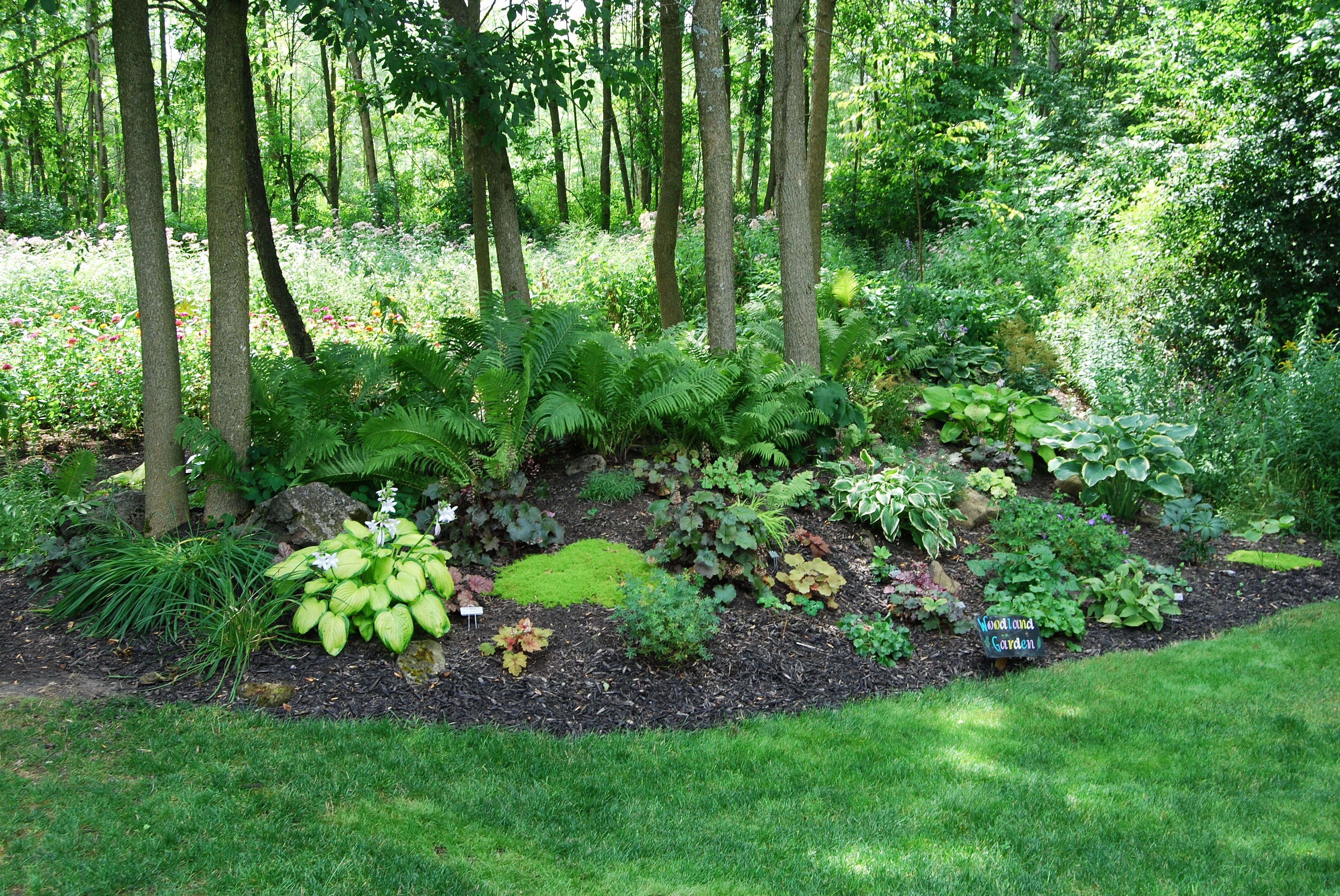 Image Result For Woodland Garden Ontario Woodland Garden Backyard Landscaping Backyard Garden Layout Backyard garden ideas ontario
