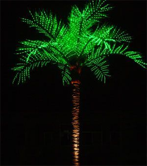5 Ft Lighted Palm Tree Led Lighted Palm Tree 16ft Tall Outdoor