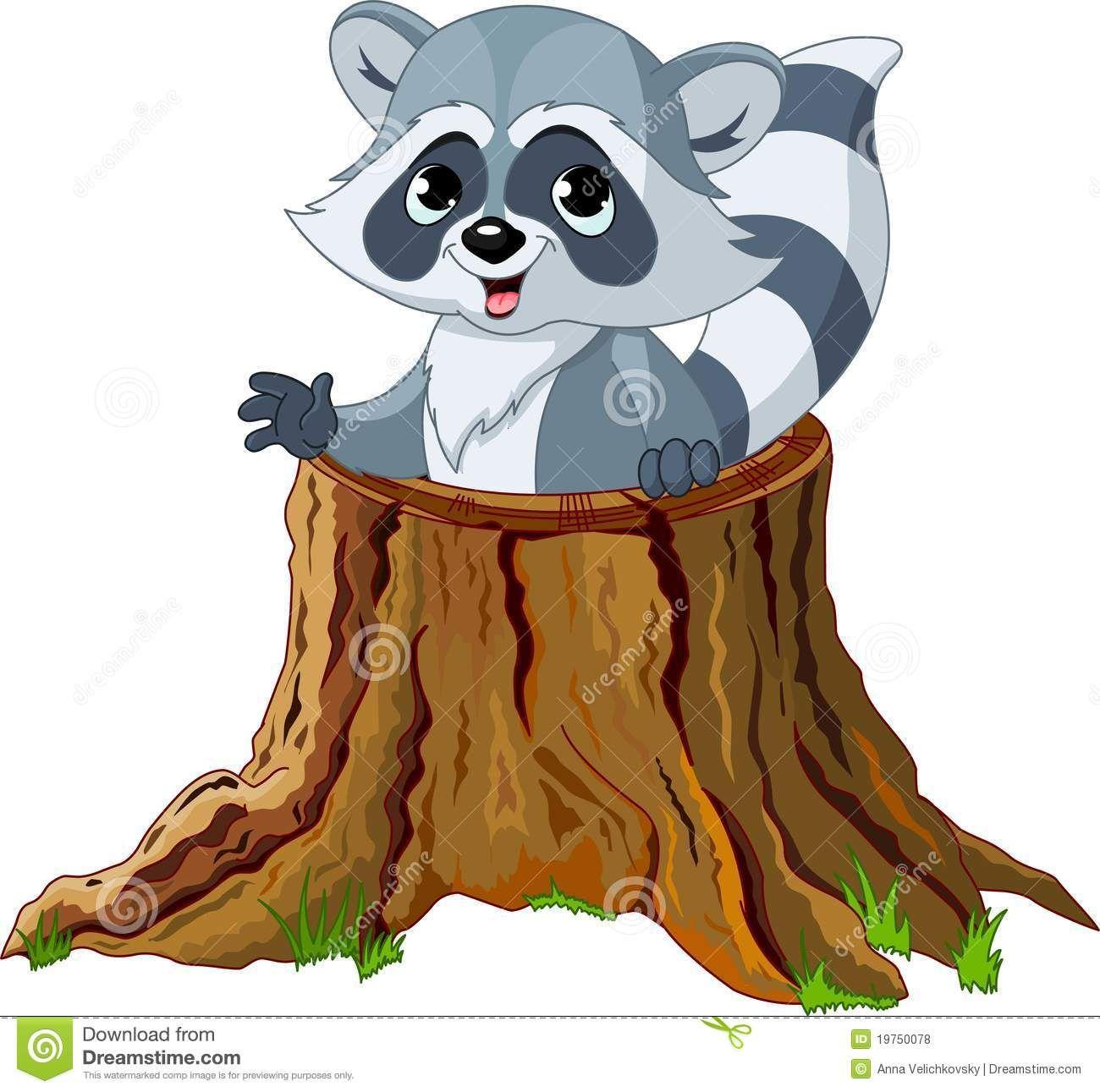 Raccoon Reading Clipart Royalty Free Stock Photos