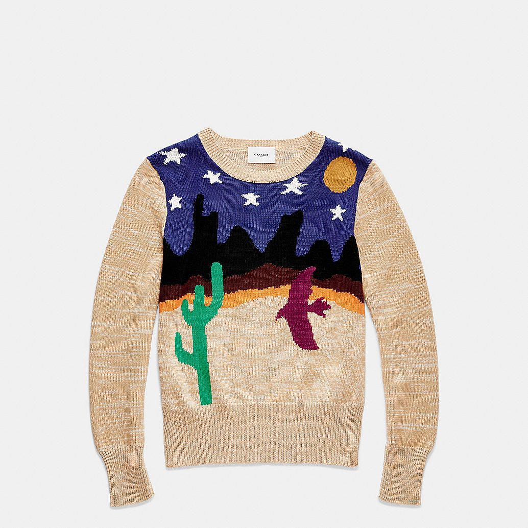 Desertscape Crewneck Sweater - 100% cotton, $495 | Fashion ...
