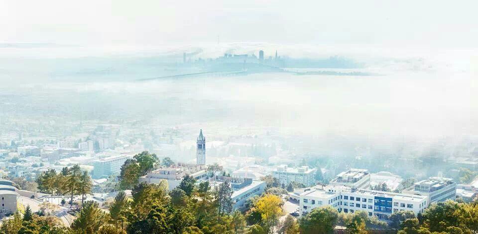 UC Berkeley.  My school!!!!