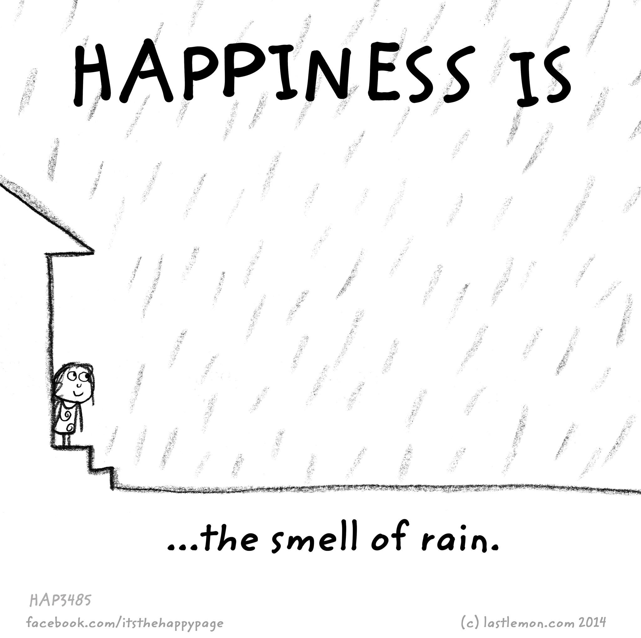 Happiness Is Quotesoftheday Pinterest Happiness Rain And