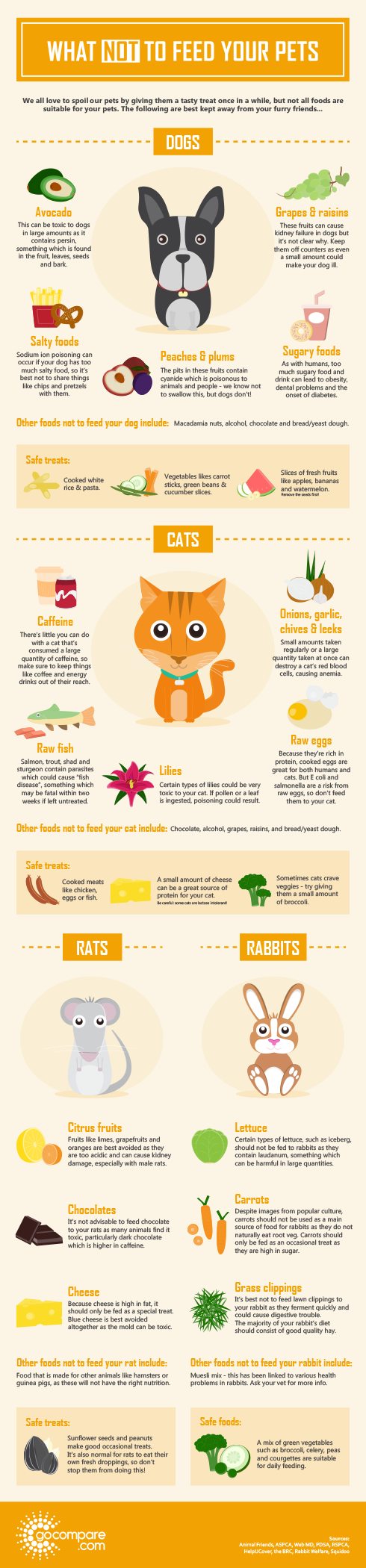 What Not To Feed Your Pets Pet Insurance Gocompare Com Animal Infographic Healthy Pets Pets