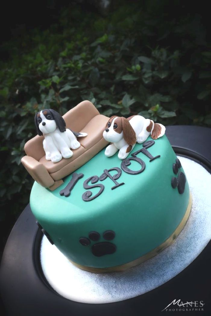 Our baby Spot Dog Party King charles Birthday cakes and Cake