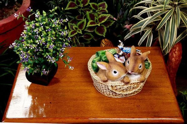 #Gift_Planter Two little Little rabbit basket and some cabbage in a basket !
