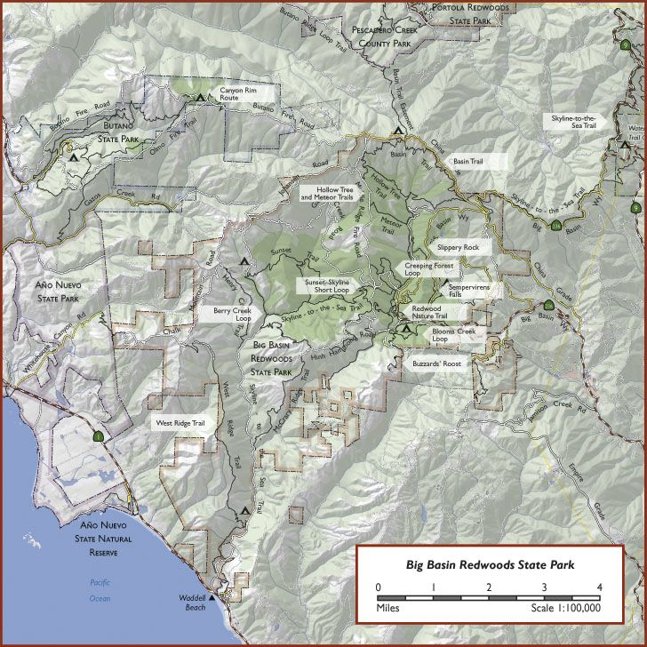 Big Basin Redwoods State Park | Places to be, things to do ...