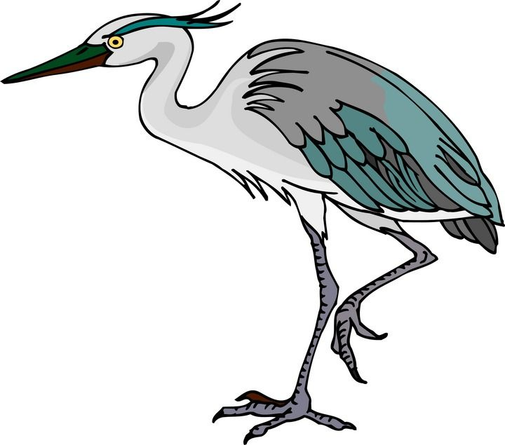 free heron clipart blue heron pinterest rh pinterest com heroin clip art heron bird clipart