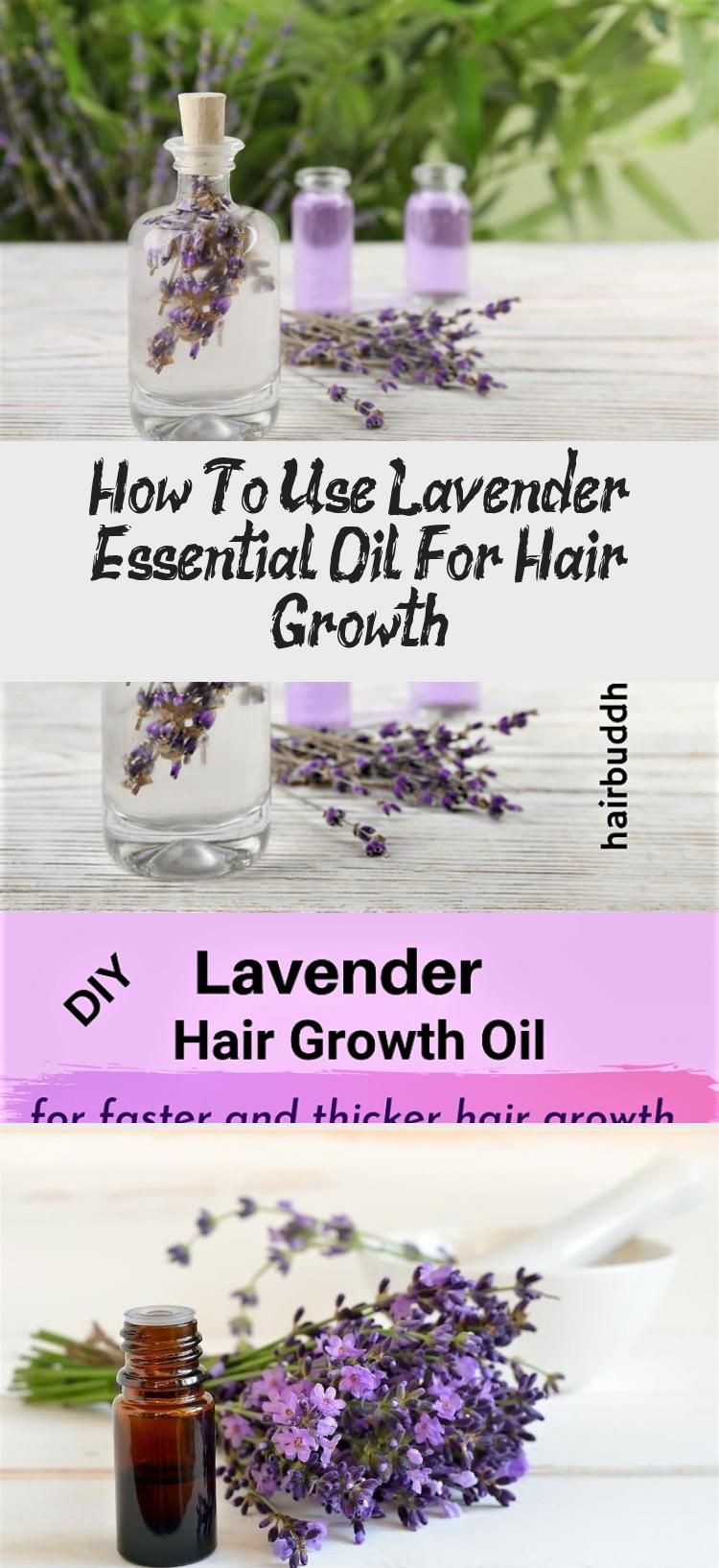 How To Use Lavender Essential Oil For Hair Growth In 2020 Hair