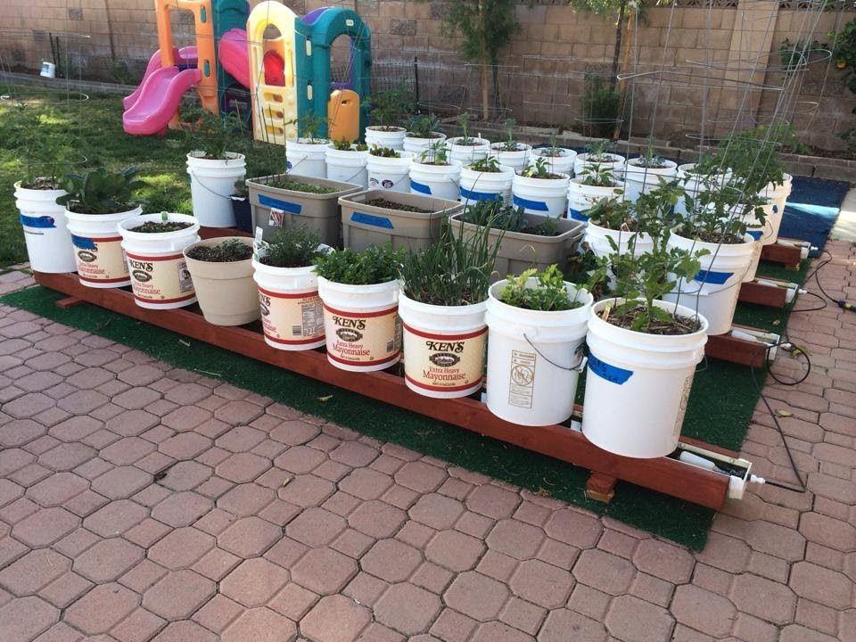 Chris Butler From Compton California And His Awesome Rain Gutter Grow S Gutter Garden Bucket Gardening Container Gardening