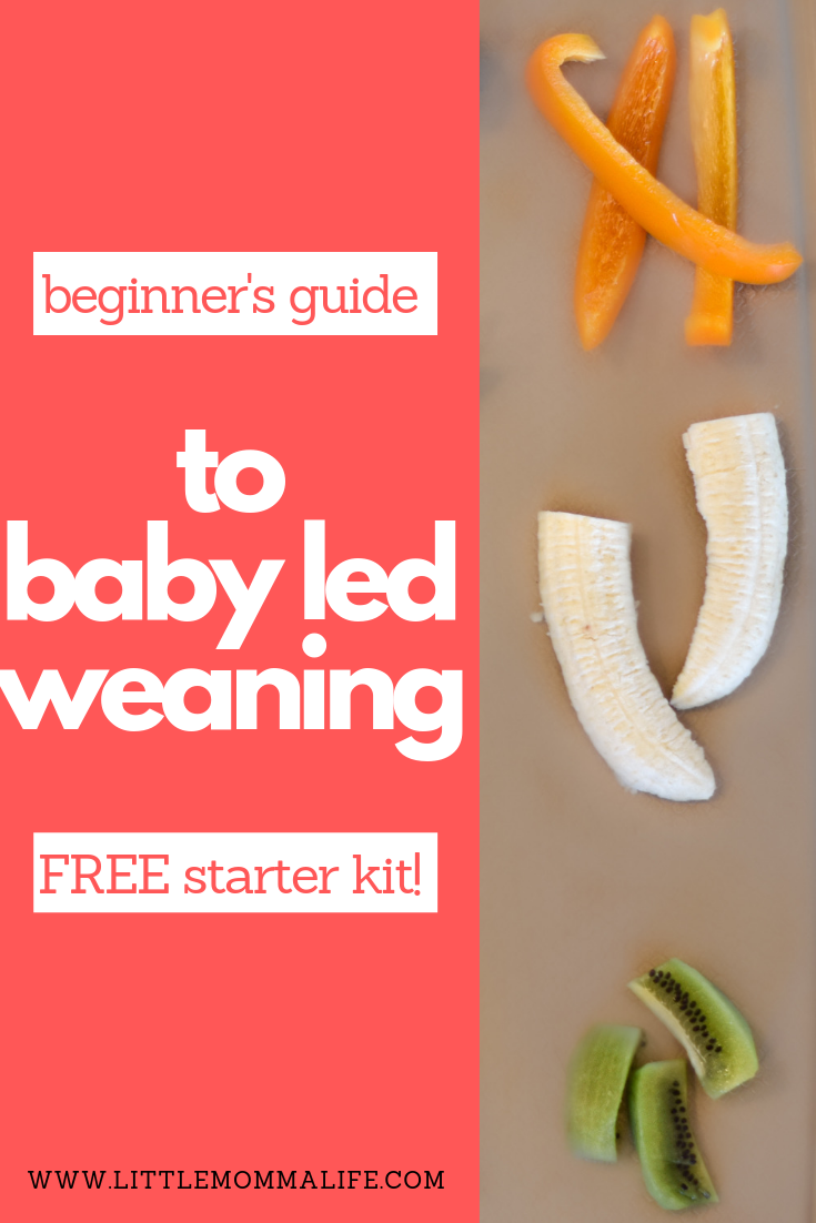 Nine Must See Secrets for Baby Led Weaning Food Prep ...