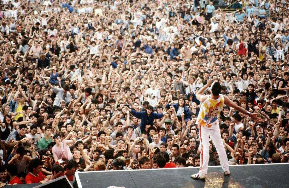 Freddie. .
