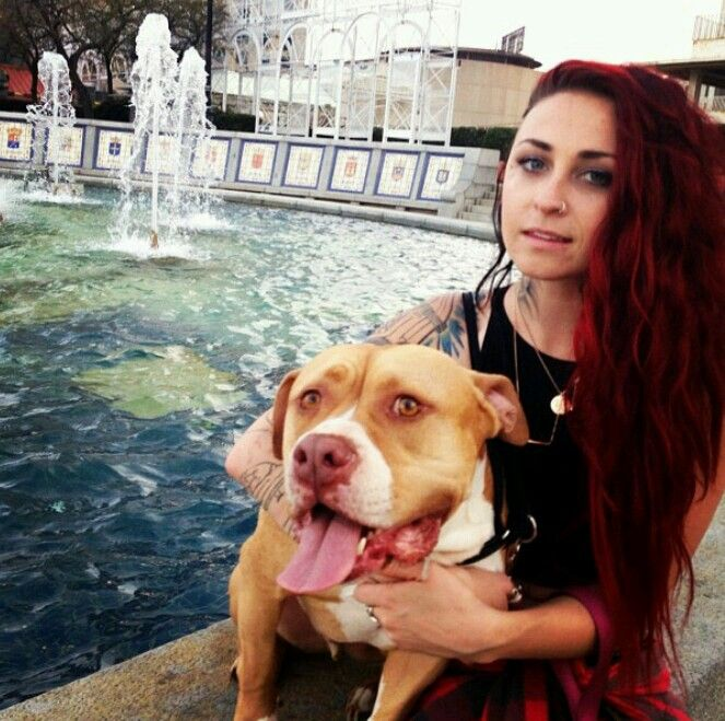 Mariah Harmony Omg This Girl Is Beyond Gorgeous Her And Her Family Are My Idols Pitbulls Villalobos Rescue Center Pitbull Mom
