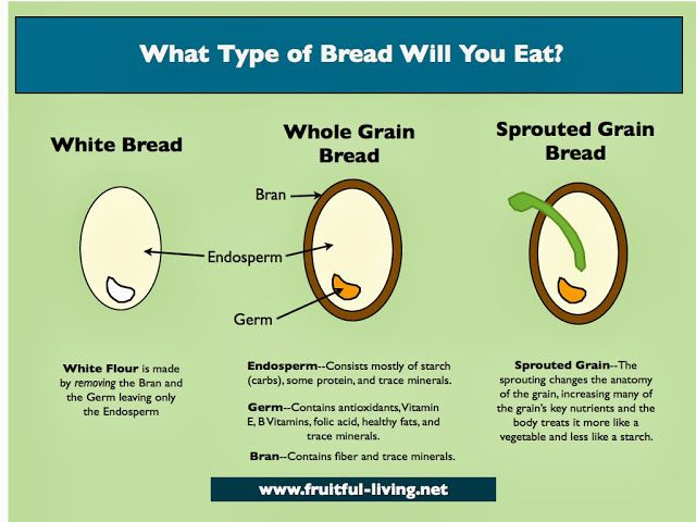 Looking At The Anatomy Of The Wheat Berry Helps To See Why Whole