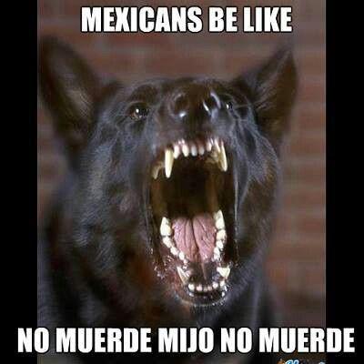 Pin En Chingaderas Mexican Humor