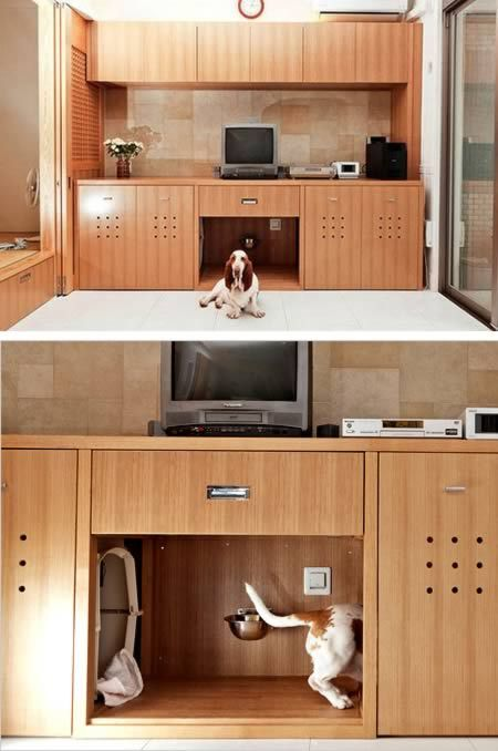 Awesome! In Toru Hiroseu0027s Living Room In Kobe, Japan, His Basset Hound,  Marco, Has A Hidden Snack Bar, Restroom And Nap Space.