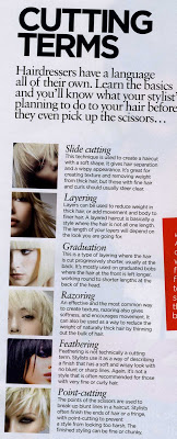 Terms Your Hair Stylist May Use Killerstrands Hair Clinic Hair Clinic Hair Stylist Hair