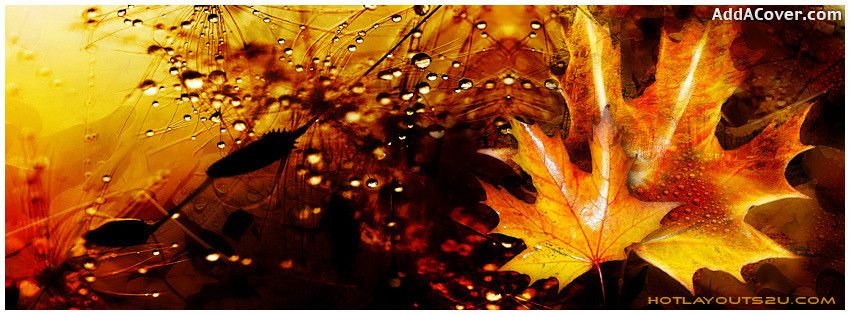 Autumn Facebook Covers, Autumn FB Covers, Autumn Facebook