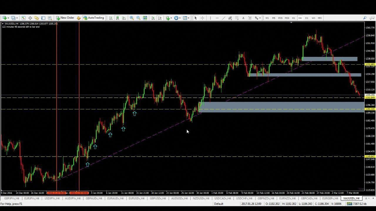 Forex Help Trading Review Yourforexeducation Forex Thebasics
