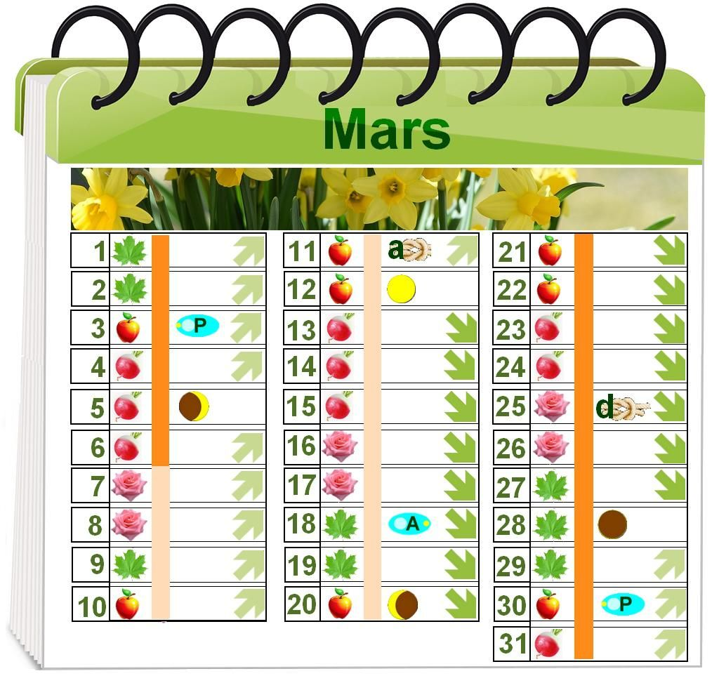 calendrier lunaire pour le jardinage biologique 2017 jardin bio garden et advent calendar. Black Bedroom Furniture Sets. Home Design Ideas