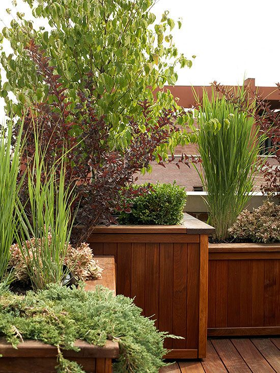 13 tips to make your deck more private planters decks for Privacy planters for decks