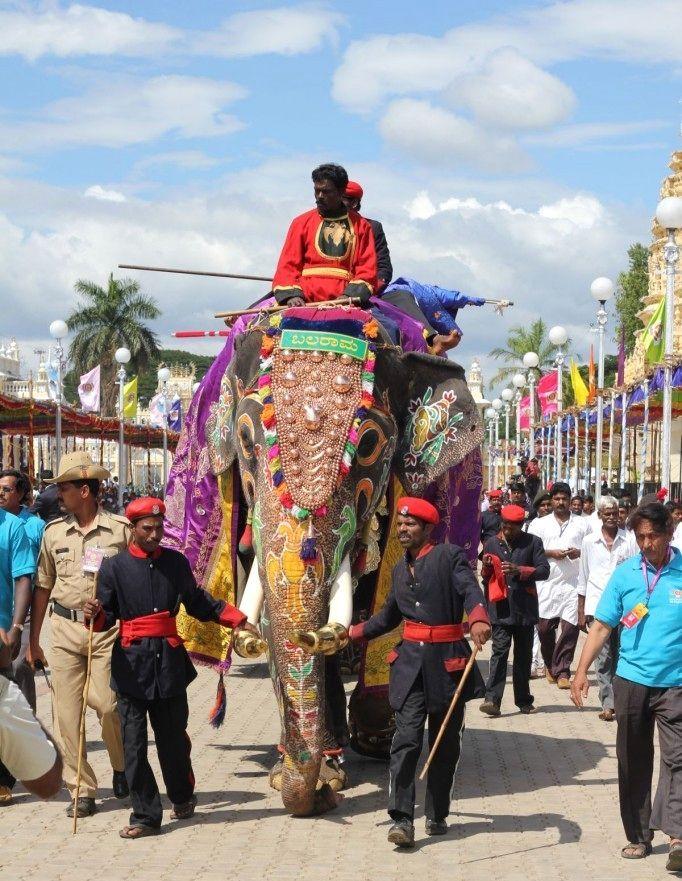 Incredible India: Mysore Dasara Celebrations 2013 - (20 Pictures)