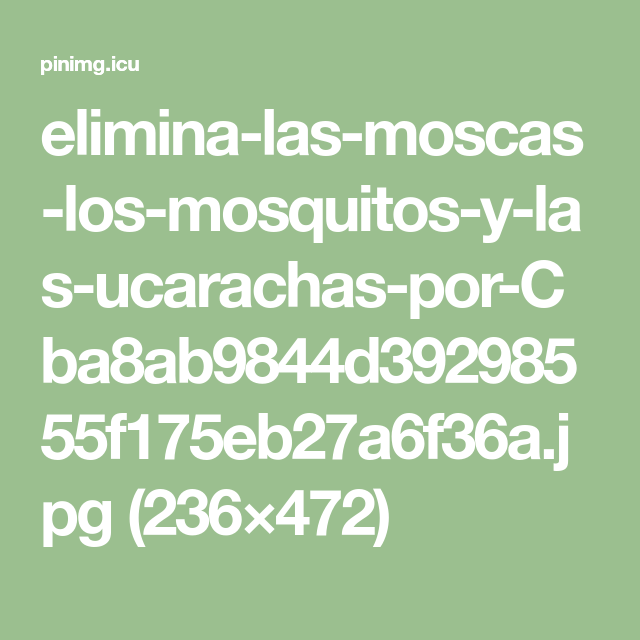 Elimina Las Moscas Los Mosquitos Y Las Ucarachas Por Cba8ab9844d39298555f175eb27a6f36a Jpg 236 472 Eliminar Las Moscas Eliminar Mosquitos