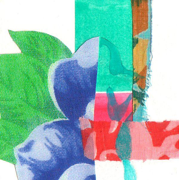 Floral collage by Fernanda Franco on Artfully Walls