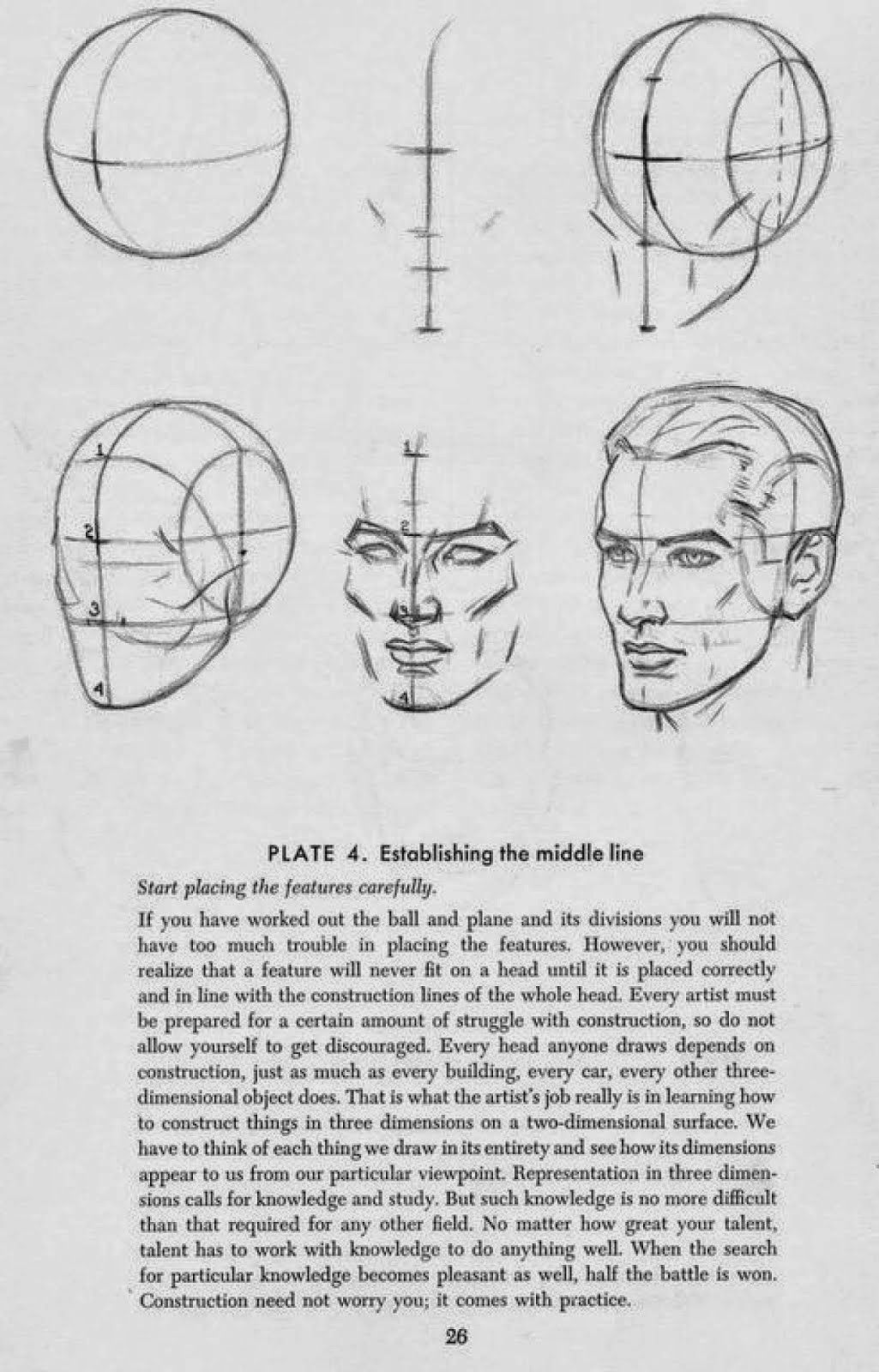 Jacob Romeo EDU: Face Planes | Anatomy drawings | Pinterest | Planes ...