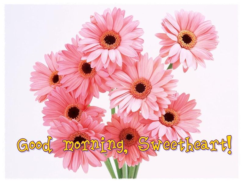 Good Morning images with Flowers - Gud morning flowers | Good ...