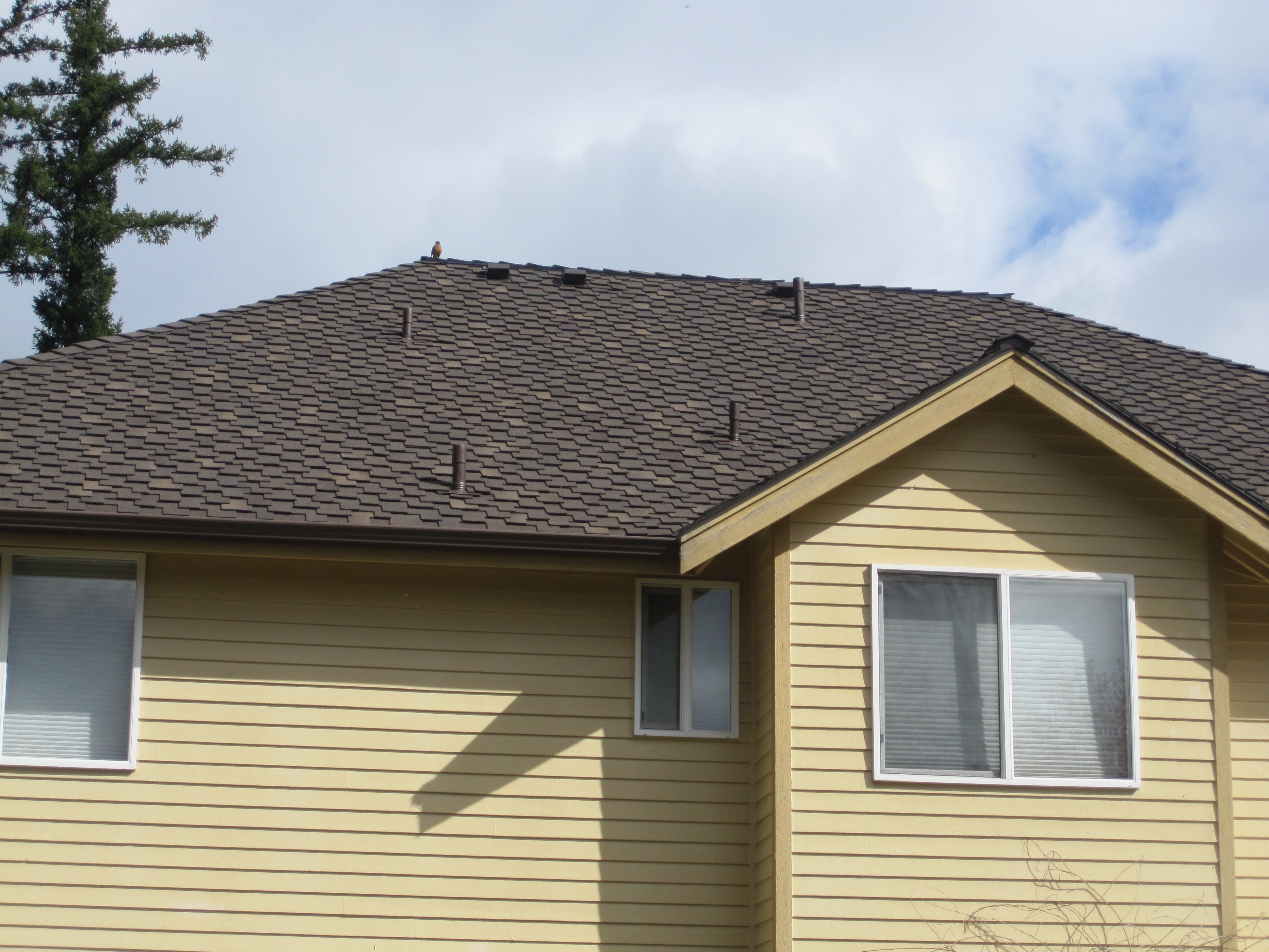 Our Maple Valley Roofing Company Replaces Composition