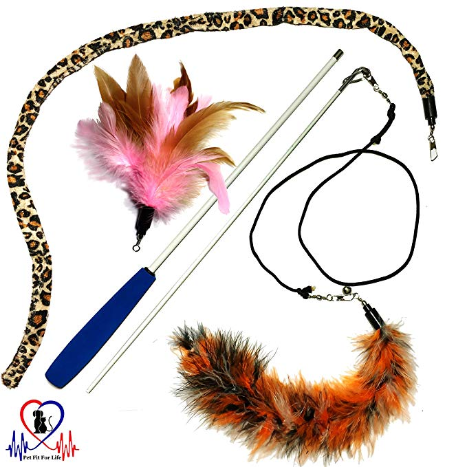 Amazon Com Pet Fit For Life 3 Piece Dual Rod Feather Teaser And Exerciser With A Slithering Snake For Cat And Kit Cat Toys Cats And Kittens Homemade Cat Toys