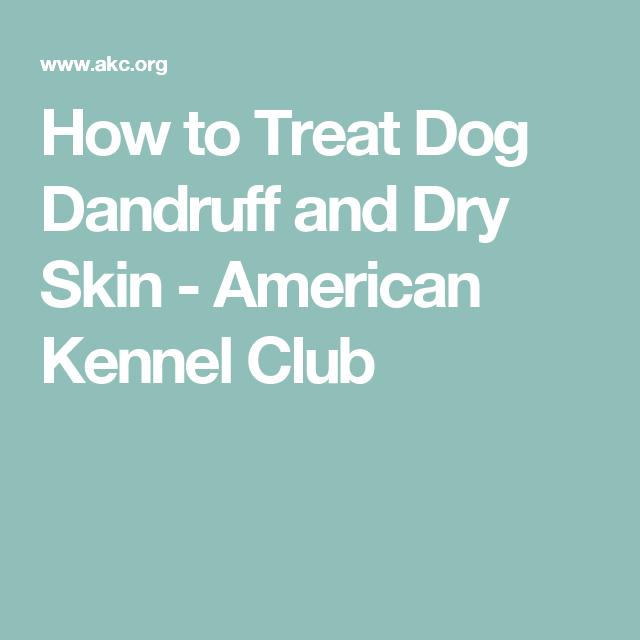 My Dog Has Dry Skin And Dandruff