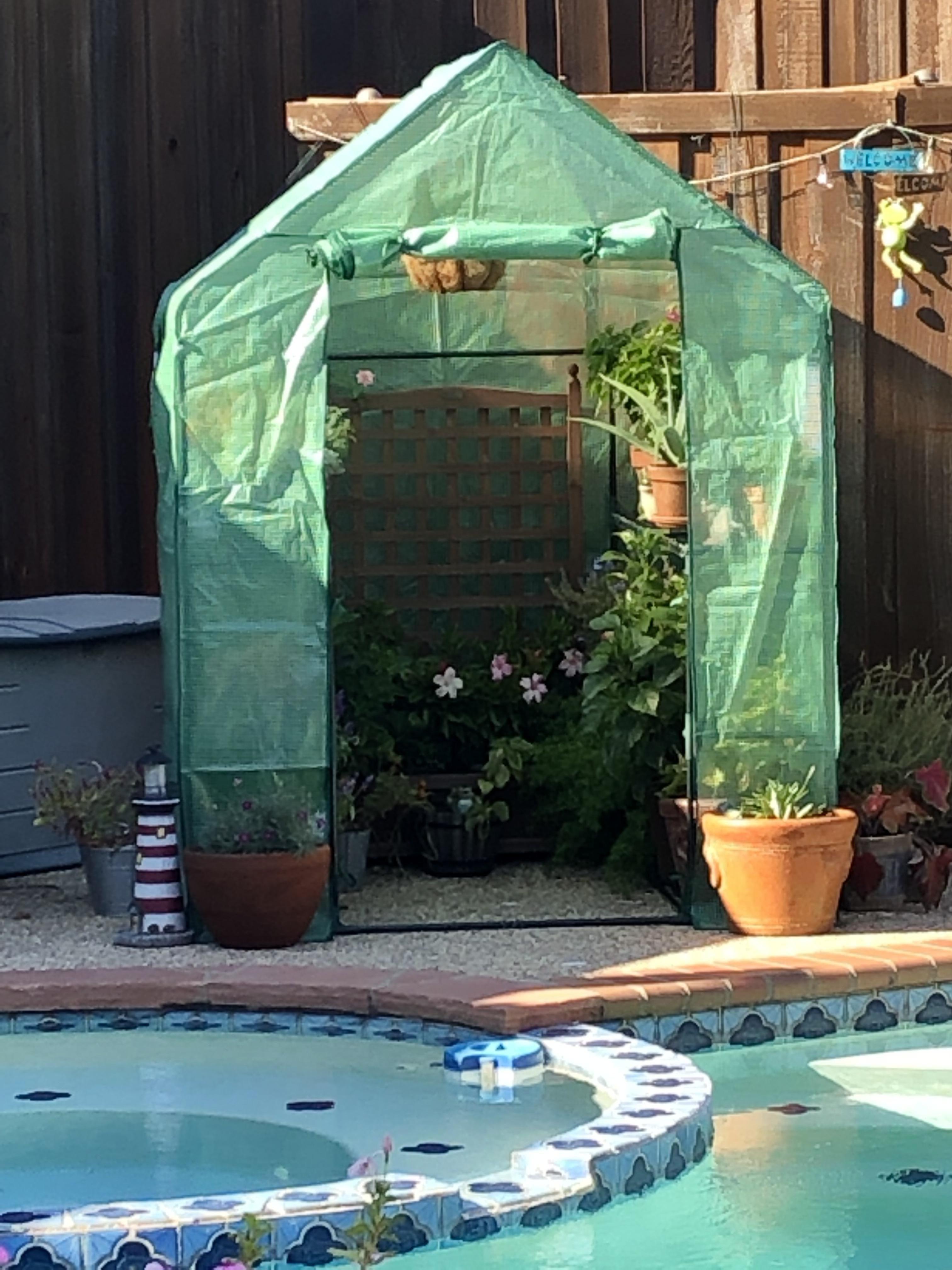 I built a green house 2 kinda easykinda cheapkinda