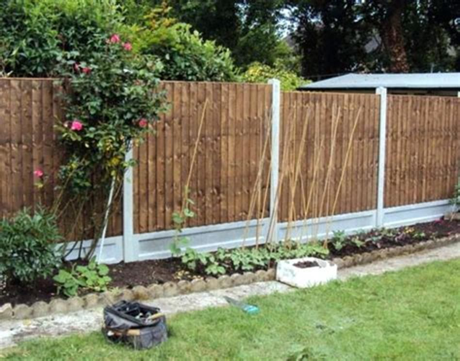 25 Best Cheap Backyard Fencing Ideas For Dogs With Images